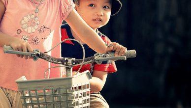 How To Choose Bike Basket Efficiently